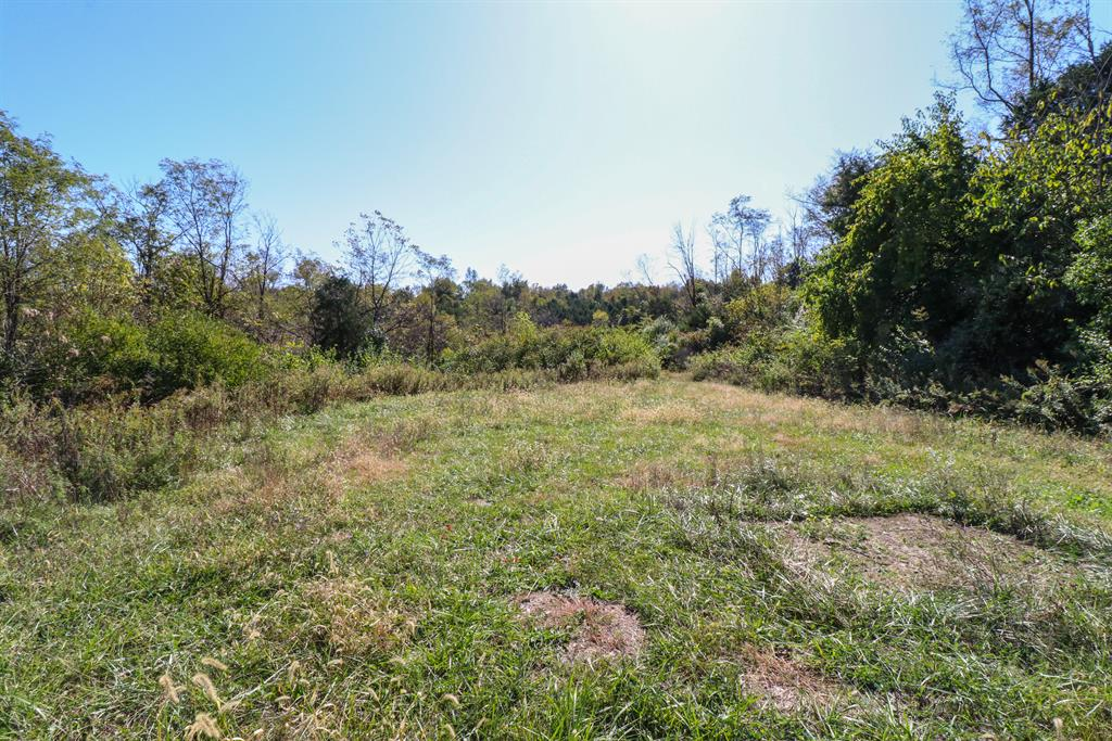 Wooded View for 8984 E Main St Alexandria, KY 41001
