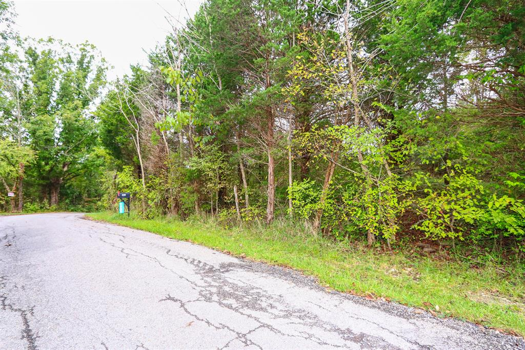 Additional Photo 1 for Stone School House Rd Williamstown, KY 41097