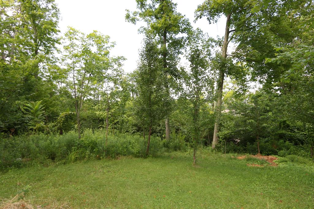 Wooded View for 2166 Summerlin St Covington, KY 41017