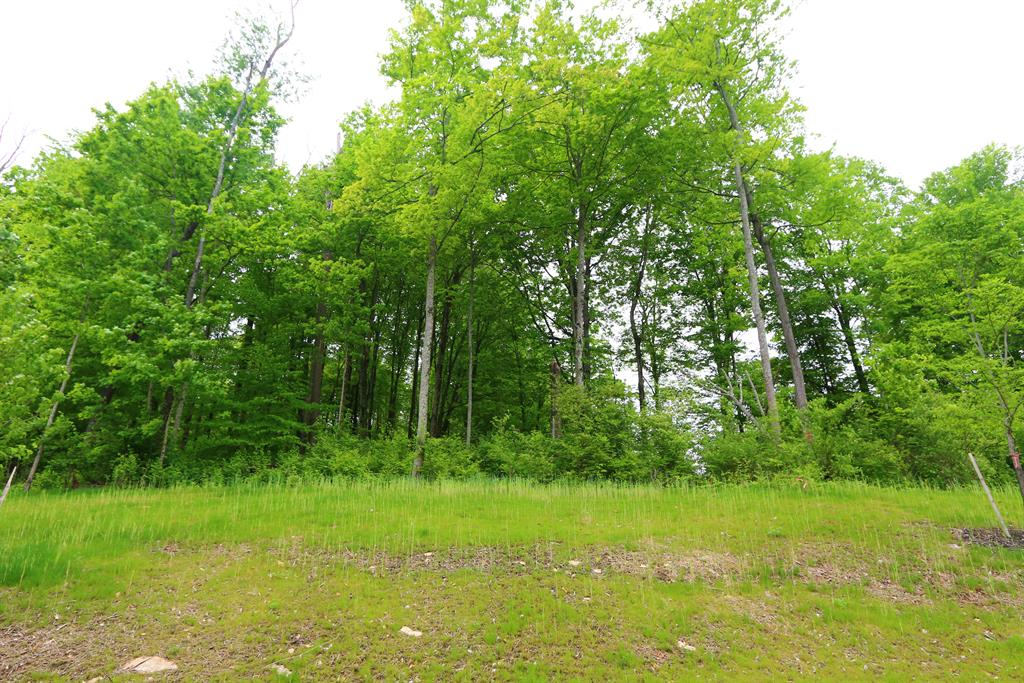 31 Lot Twin Fences Indian Hill, OH