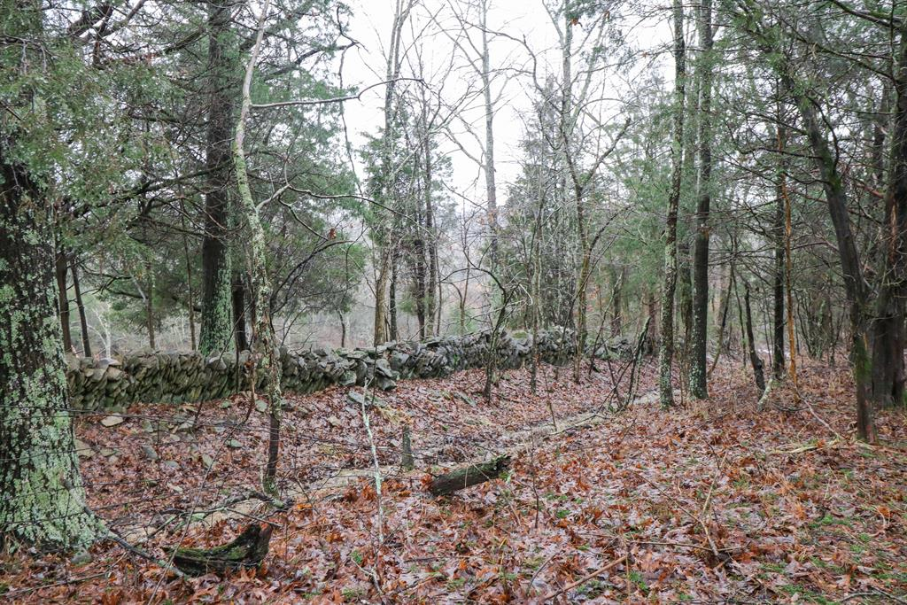 Wooded View for 1730 Ammerman Ln Falmouth, KY 41040