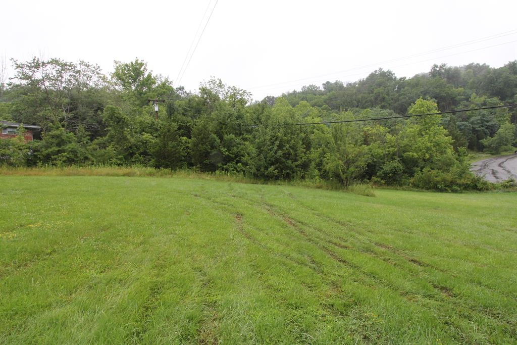 Wooded View for 710 Fair Oaks Dr Edgewood, KY 41017