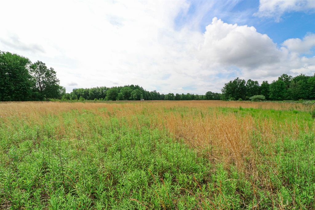 Acreage for 2741 15.60 ac St Rt 131 Wayne Twp. (Clermont Co.), OH 45103