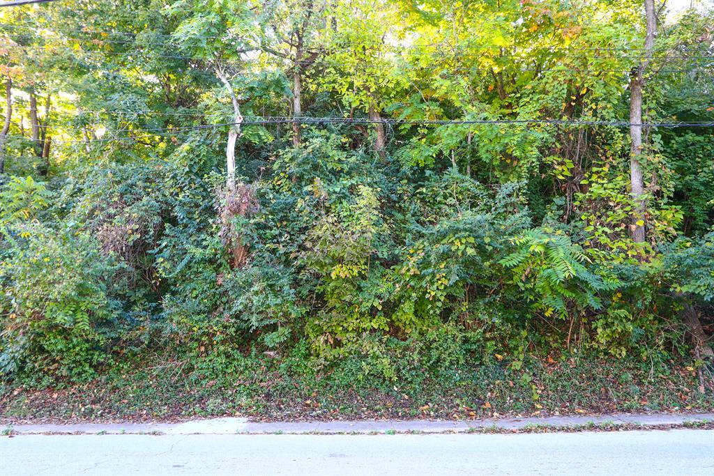 Exterior (Main) for 925 Spring St Covington, KY 41016