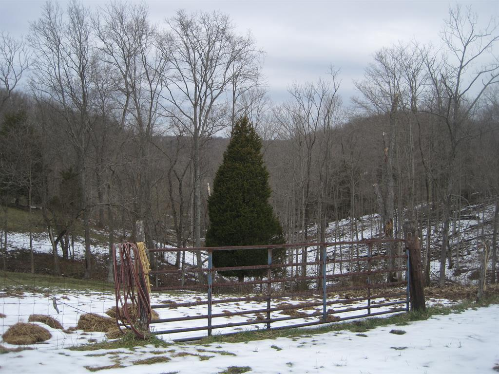 View for 1771 Little Sugar Creek Warsaw, KY 41095