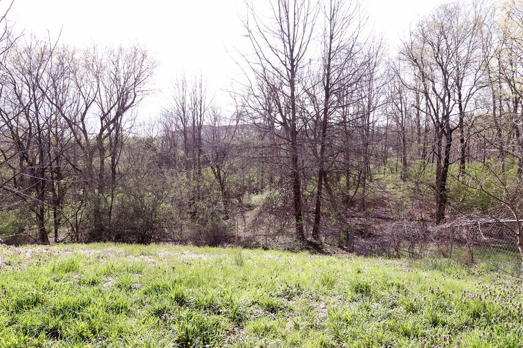 Wooded View for 3910 Archer Ct Florence, KY 41042